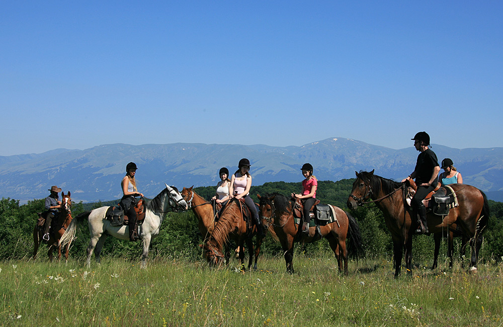 horseback riding with a family