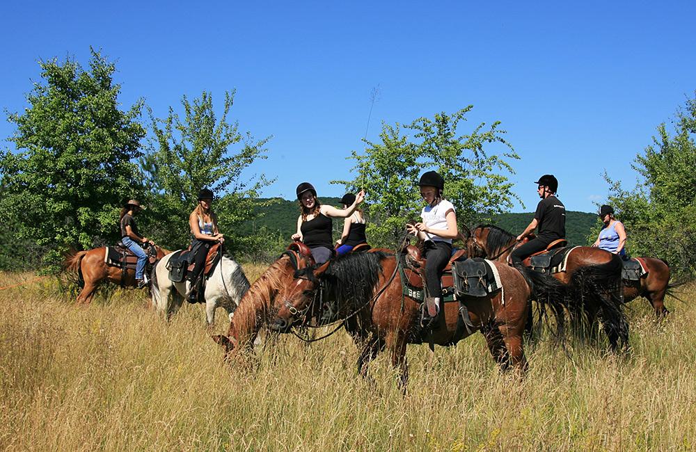 family holiday on a horseback
