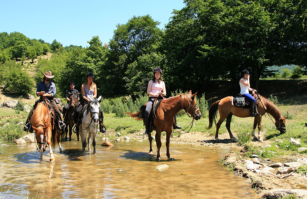 family equestrian tours in bulgaria