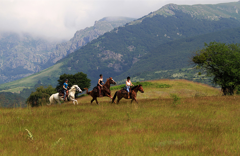 horseback riding holidays in the mountains