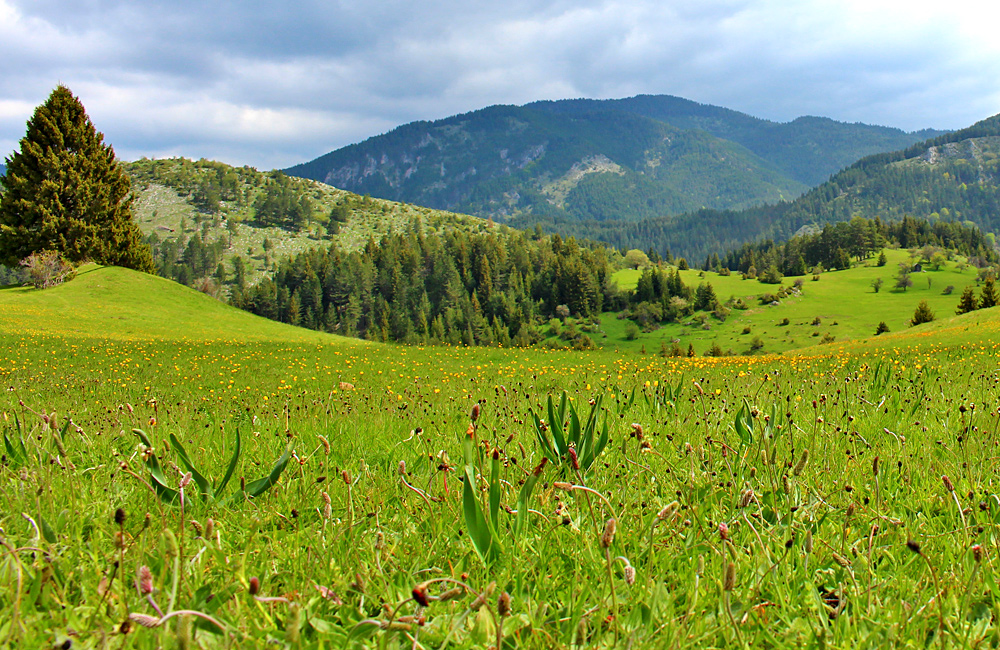 rhodope mountains walking and hiking tours, bulgaria