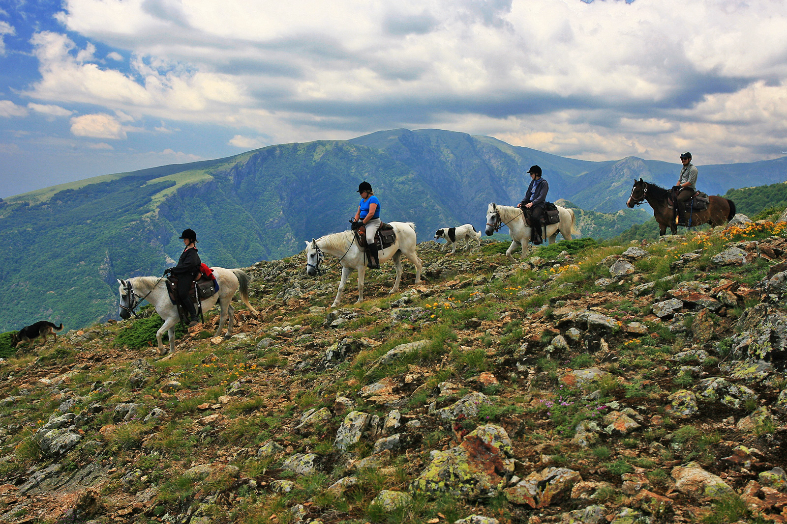 equestrian holidays in bulgaria