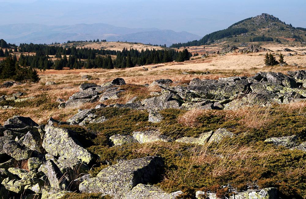 vitosha mountains walking and hiking tours, bulgaria