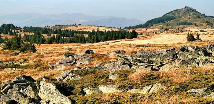 vitosha mountains and cherni vrah peak hiking tours from sofia, bulgaria