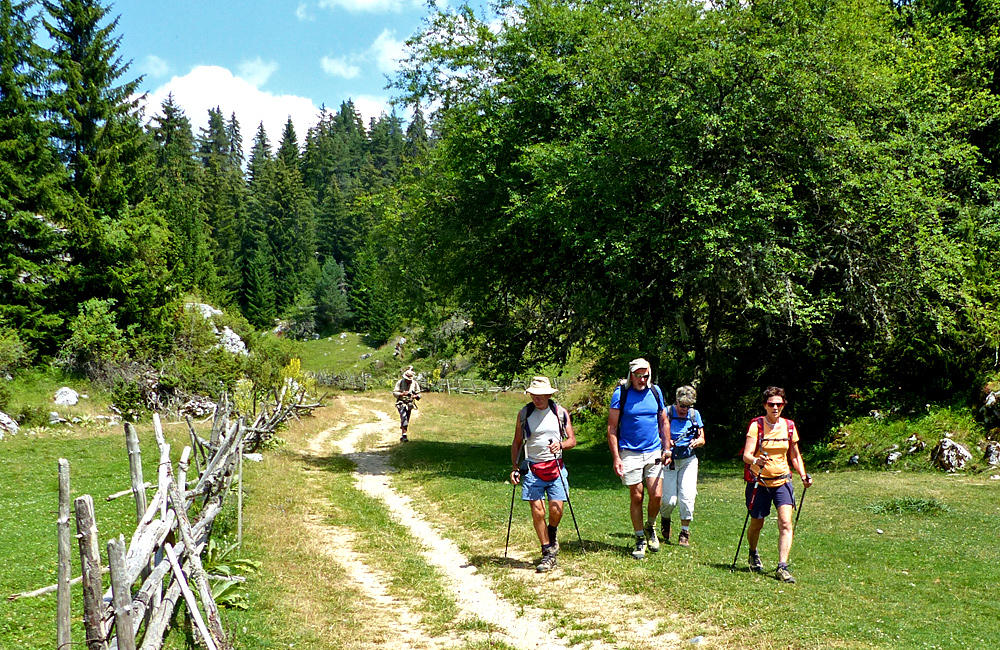 walking tour in the rhodope mountains of bulgaria